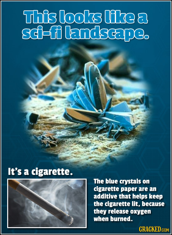 This looks like a sci-fi landscape. It's a cigarette. The blue crystals on cigarette paper are an additive that helps keep the cigarette lit, because