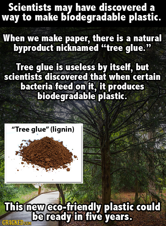 Scientists may have discovered a way to make biodegradable plastic. When we make paper, there is a natural byproduct nicknamed tree glue. Tree glue