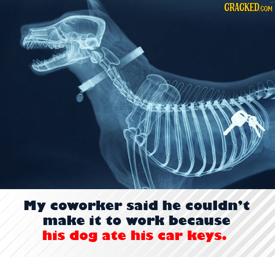 My coworker said he couldn't make it to work because his dog ate his car keys.