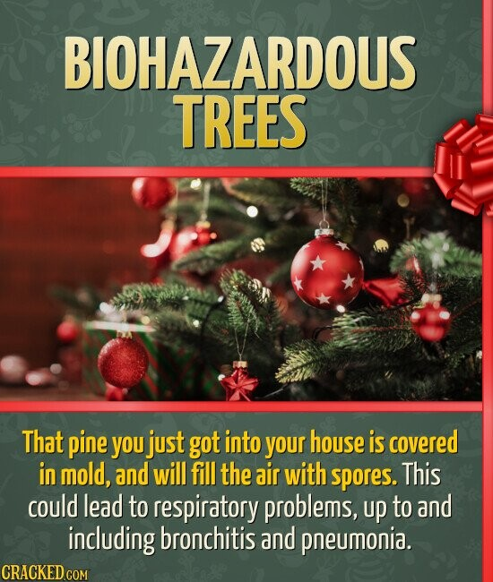 BIOHAZARDOUS TREES That pine you just got into your house is covered in mold, and will fill the air with spores. This could lead to respiratory proble