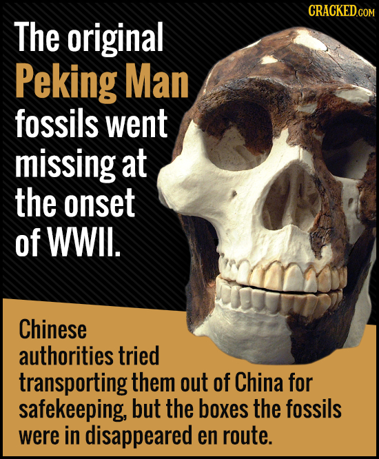 The original Peking Man fossils went missing at the onset of WWIL. Chinese authorities tried transporting them out of China for safekeeping, but the b
