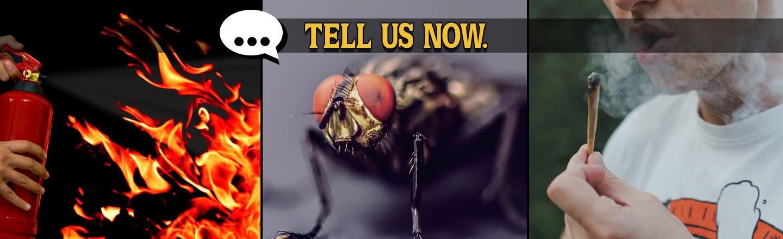 Tell Us Now: Horrifying Summer Job Stories