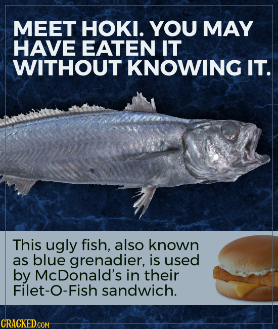 MEET HOKI. YOU MAY HAVE EATEN IT WITHOUT KNOWING IT. This ugly fish, also known as blue grenadier, is used by McDonald's in their Filet-O-Fish sandwic