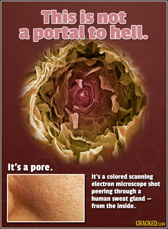 This is not a portal to hell. It's a pore. It's a colored scanning electron microscope shot peering through a human sweat gland - from the inside.