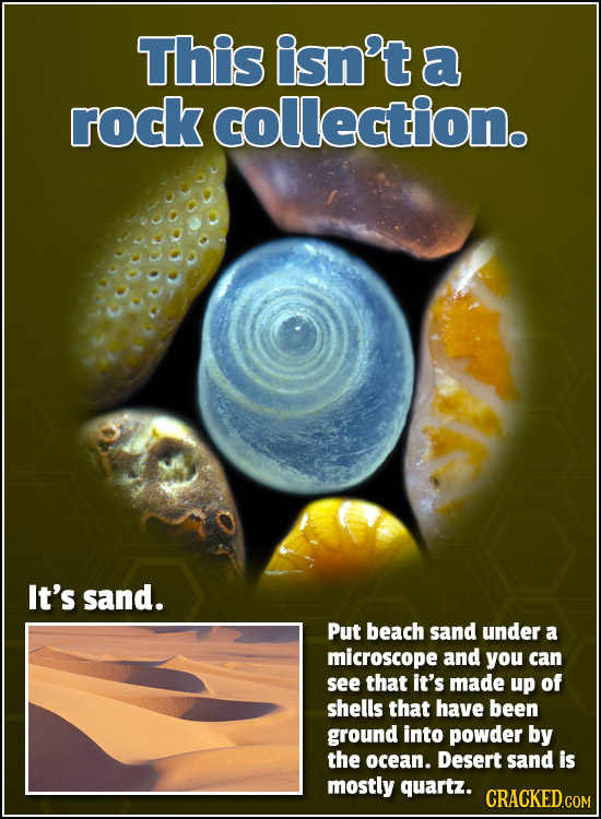 This isn't a rock collection. It's sand. Put beach sand under a microscope and you can see that it's made up of shells that have been ground into powd
