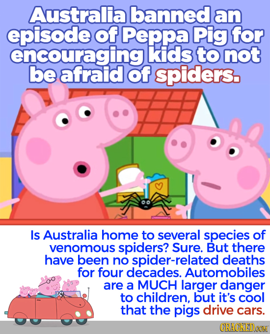 Australia banned an episode of Peppa Pig for encouraging kids to not be afraid of spiders. Is Australia home to several species of venomous spiders? S