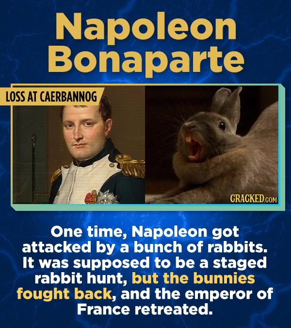 17 Surprising (True) Facts About Awful People - One time, Napoleon got attacked by a bunch of rabbits. It was supposed to be a staged rabbit hunt, but