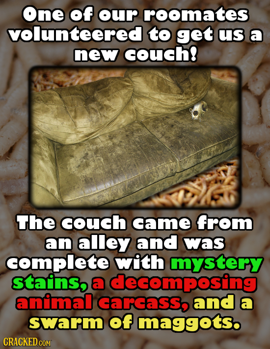 One of our roomates volunteered to get us a new couch! The couch came from an alley and was complete with mystery stains, a decomposing animal carcass