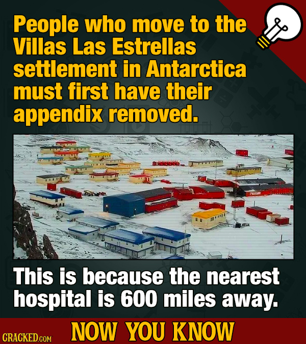 People who move to the Villas Las Estrellas settlement in Antarctica must first have their appendix removed. This is because the nearest hospital is 6
