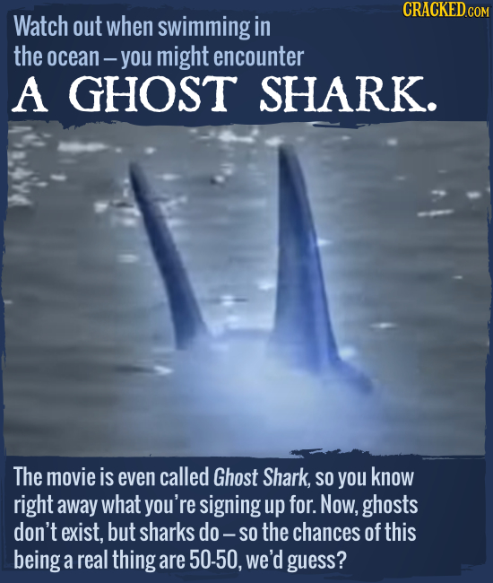 Watch out when swimming in the ocean- you might encounter A GHOST SHARK. The movie is even called Ghost Shark, SO you know right away what you're sign
