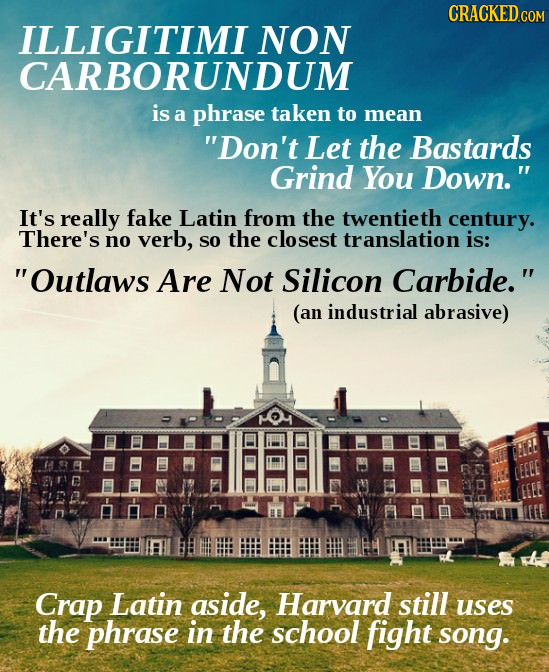 CRACKED.COM ILLIGITIMI NON CARBORUNDUM is a phrase taken to mean Don't Let the Bastards Grind You Down. It's really fake Latin from thE twentieth ce