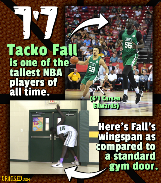 1'7 CETIES Tacko Fall 55 is one of the CELICS tallest NBA 29 players of all time. (641 Carsem Edwards) Here's Fall's L3 wingspan as compared to a stan