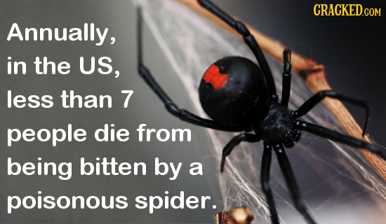 25 Real Facts That Make Common Fears Way Less Scary