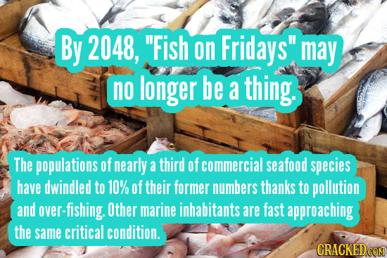 By 2048, Fish on Fridays may no longer be a thing. The populations of nearly a third of commercial seafood species have dwindled to 10% of their for
