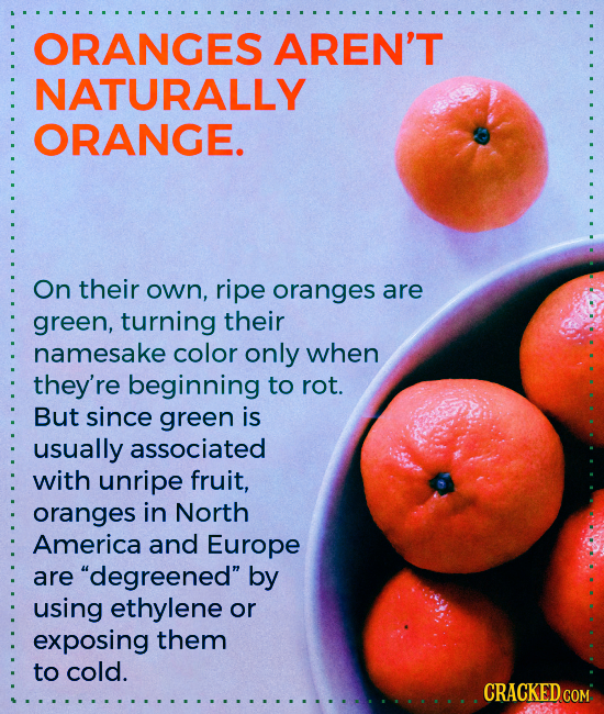 ORANGES AREN'T NATURALLY ORANGE. On their own, ripe oranges are green, turning their namesake color only when they're beginning to rot. But since gree