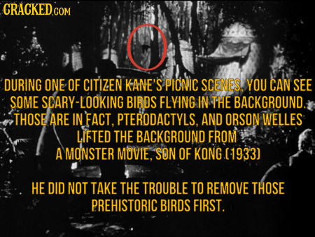 DURING ONE OF CITIZEN KANE'S PICNIC SCENES. YOU CAN SEE SOME SCARY-LOOKING BIRDS FLYING IN THE BACKGROUND. THOSE ARE IN FACT, PTERODACTYLS, AND ORSON