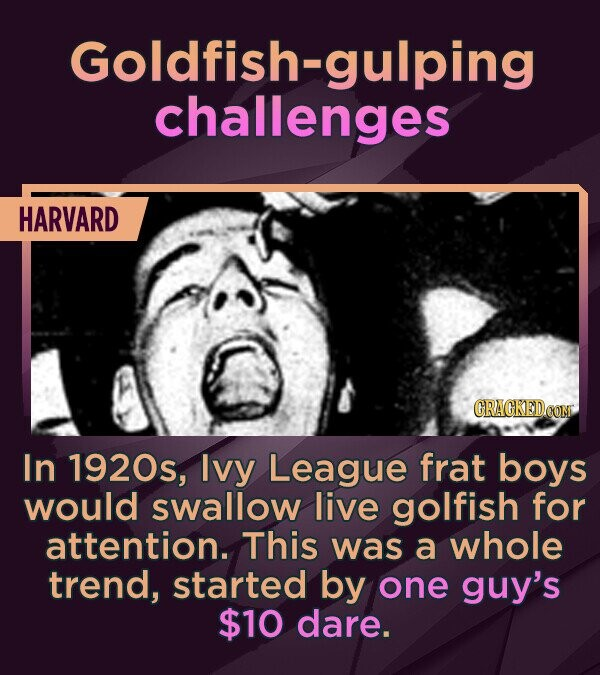 Goldfish- challenges HARVARD In 1920s, Ivy League frat boys would swallow live golfish for attention. This was a whole trend, started by one guy's $10
