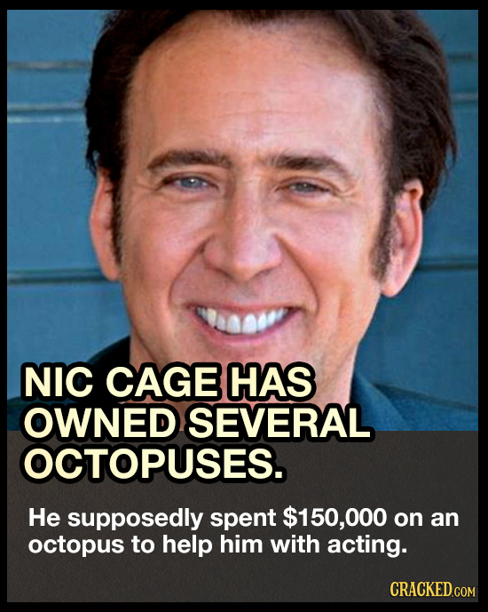 NIC CAGE HAS OWNED SEVERAL OCTOPUSES. He supposedly spent $150,00 on an octopus to help him with acting. CRACKED.COM