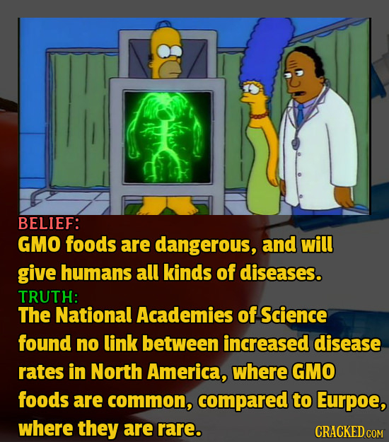 BELIEF: GMO foods are dangerous, and will give humans all kinds of diseases. TRUTH: The National Academies of Science found no link between increased