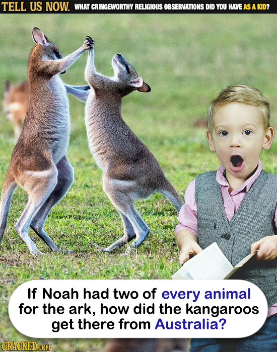 TELL US NOW. WHAT CRINGEWORTHY RELIGIOUS OBSERVATIONS DID YOU HAVEAS A KID? If Noah had two of every animal for the ark, how did the kangaroos get the