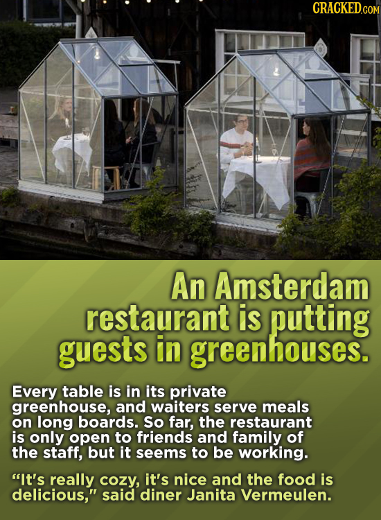 CRacKED.com An Amsterdam restaurant is putting guests in greenhouses. Every table is in its private greenhouse, and waiters serve meals on long boards