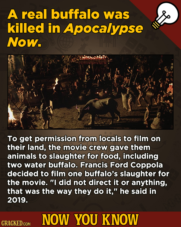 A Fresh Serving Of Trivia About Science, History, Movies, And More - A real buffalo was killed in Apocalypse Now. To get