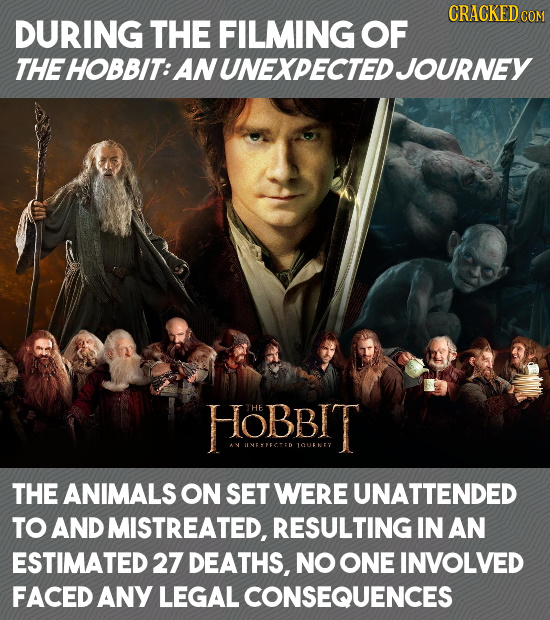 CRACKEDcO DURING THE FILMING OF THE HOBBIT: ANUNEXPECTED JOURNEY HOBBIT UVEETD 1CUNTY THE ANIMALS ON SET WERE UNATTENDED TO AND MISTREATED, RESULTING