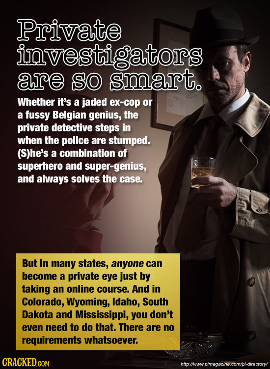 Private investigators are SO smart. Whether it's a jaded ex-cop or a fussy Belgian genius, the private detective steps in when the police are stumped.