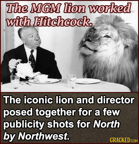 The MGM lion worked with Hitchcock. The iconic lion and director posed together for a few publicity shots for North by Northwest. CRACKED COM