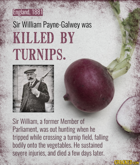 England, 1881 Sir William Payne-Galwey was KILLED BY TURNIPS. Sir William, a former Member of Parliament, was out hunting when he tripped while crossi
