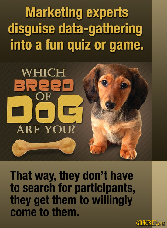 Marketing experts disguise data-gathering into a fun quiz or game. WHICH BREED Dog OF ARE YOU That way, they don't have to search for participants, th