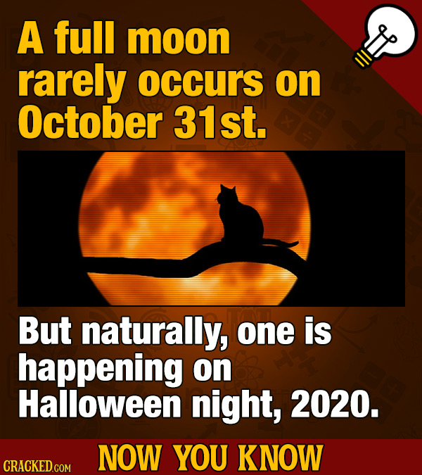 A full moon rarely occurs on October 31st. But naturally, one is happening on Halloween night, 2020. NOW YOU KNOW