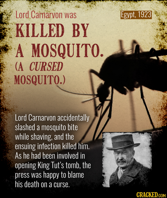 Egypt, 1923 Lord Carnarvon was KILLED BY A MOSQUITO. (A CURSED MOSQUITO.) Lord Carnarvon accidentally slashed a mosquito bite while shaving, and the e