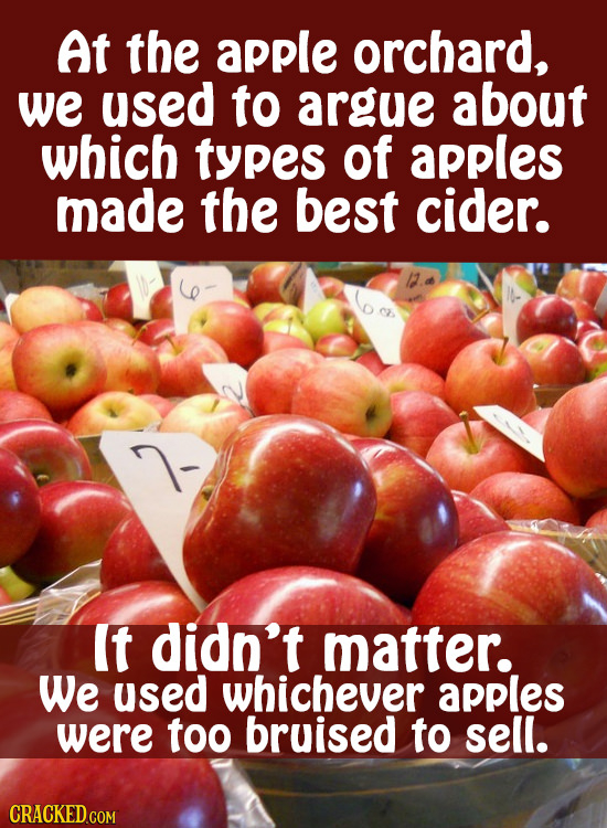 At the apple orchard, we used to argue about which types of apples made the best cider. It didn't matter. We used whichever apples were too bruised to