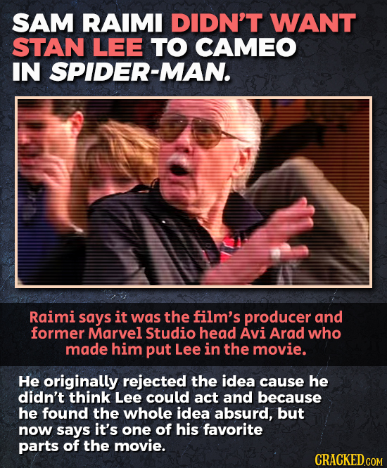 SAM RAIMI DIDN'T WANT STAN LEE TO CAMEO IN SPIDER-MAN. Raimi says it was the film's producer and former Marvel Studio head Avi Arad who made him put L