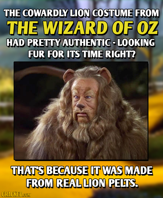 THE COWARDLY LION COSTUME FROM THE WIZARD OF OZ HAD PRETTY AUTHENTIC-LOOKING FUR FOR ITS TIME RIGHT? THAT'S BECAUSE IT WAS MADE FROM REAL LION PELTS.