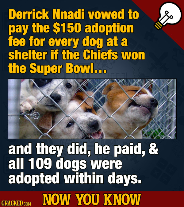 Derrick Nnadi vowed to pay the $150 adoption fee for every dog at a shelter if the Chiefs won the Super Bowl... and they did, he paid, & all 109 dogs