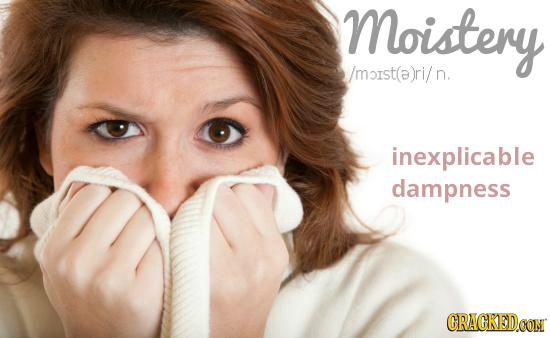 Moistery /moist(a)ri/ n. inexplicable dampness CRACKEDCON