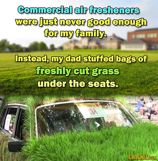 Commercial air fresheners were just never good enough for my family. Instead, my dad stuffed bags of freshly cut grass under the seats. CRACKED COM