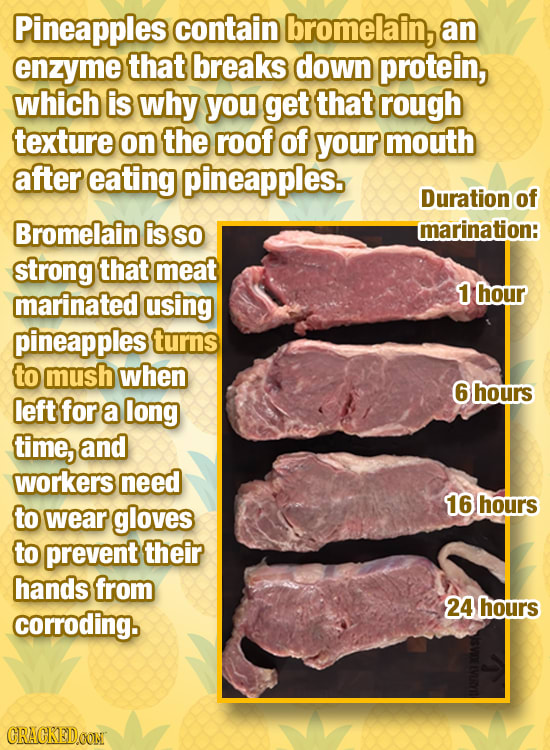 Bizarre Stuff You Unknowingly Eat