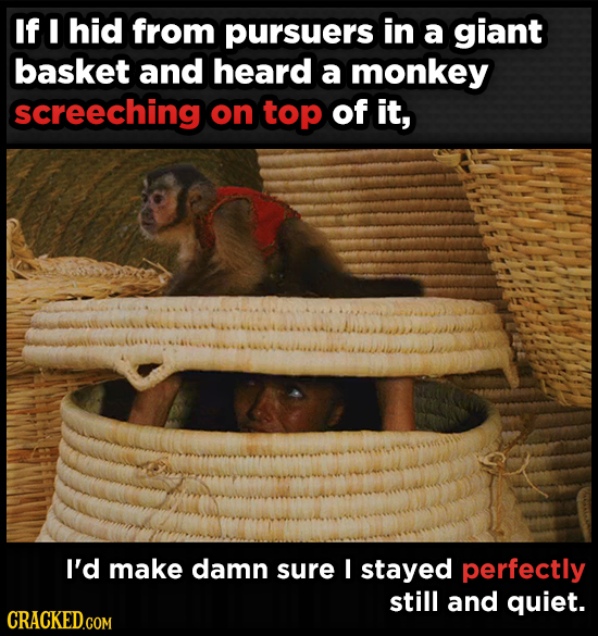 If I hid from pursuers in a giant basket and heard a monkey screeching on top of it, I'd make damn sure I stayed perfectly still and quiet.
