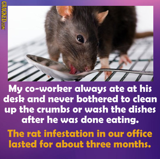 My co-worker always ate at his desk and never bothered to clean up the crumbs or wash the dishes after he was done eating. The rat infestation in our