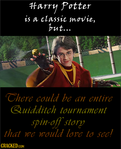 #arry Potter is a classic movie, but... There could be an entire Quidditch tournament spin-off story that would love we to see!