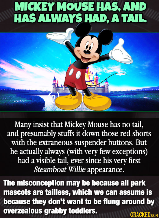 MICKEY MOUse HAS, AND HAS ALWAYS HAD, A TAIL. Many insist that Mickey Mouse has no tail, and presumably stuffs it down those red shorts with the extra