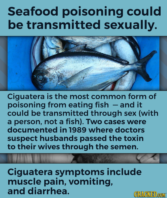 Seafood poisoning could be transmitted sexually. Ciguatera is the most common form of poisoning from eating fish and it could be transmitted through s