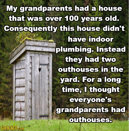 My grandparents had a house that was over 100 years old. Consequently this house didn't have indoor plumbing. Instead they had two outhouses in the ya
