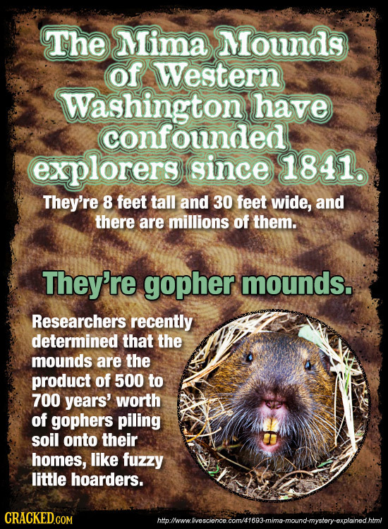 The Mima Mounds of Western Washington have confounded explorers since 1841 They're 8 feet tall and 30 feet wide, and there are millions of them. They'