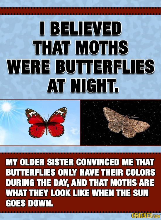 I BELIEVED THAT MOTHS WERE BUTTERFLIES AT NIGHT. MY OLDER SISTER CONVINCED ME THAT BUTTERFLIES ONLY HAVE THEIR COLORS DURING THE DAY, AND THAT MOTHS A