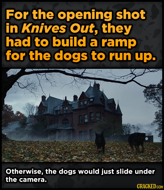 For the opening shot in Knives Out, they had to build a ramp for the dogs to run up. Otherwise, the dogs would just slide under the camera.