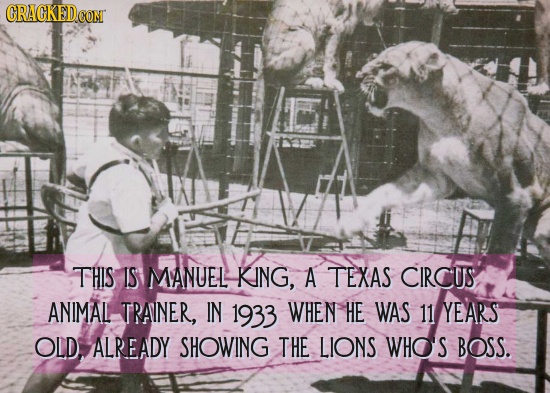 GRAGKEDCON THIS IS MANUEL KING, A TEXAS CIRCUS ANIMAL TRAINER, IN 1933 WHEN HE WAS 11 YEARS OLD, ALREADY SHOWING THE LIONS WHOS BOSS.